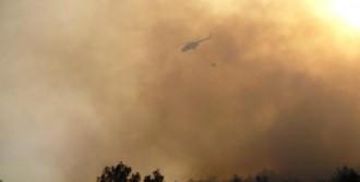25 Hektarlık Orman Yandı