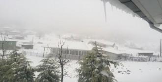 Sakarya'nın Yükseklerine Kar Yağdı
