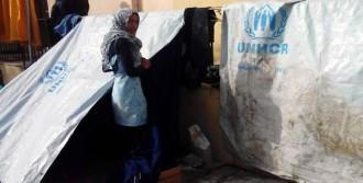 Sakız'daki Mülteciler Açlık Grevinde