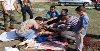 Samsun'da Kurban Kesimi Manzaraları