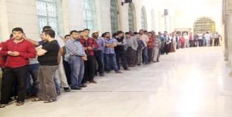 Şanlıurfa'da 10 Bin Kişiye Tirit
