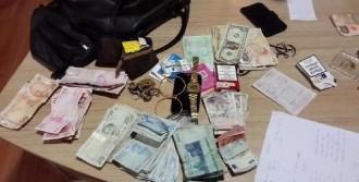 Sapanca'da Araçları Soyanlar, İzmit'te Yakalandı