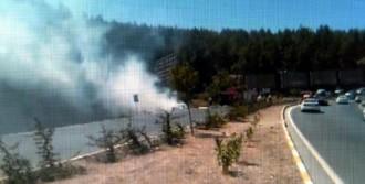 Devrilip Yanan Otomobil, Ormanı Yaktı