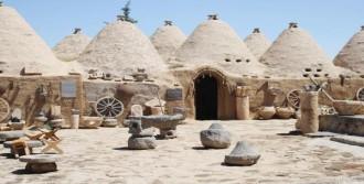 Harran'da Köy Kuruluyor