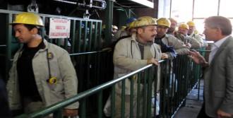 Madencinin Yevmiye Tepkisi