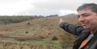 Spil'in Simgesi Yılkı Atları Çatma Dağı'nda