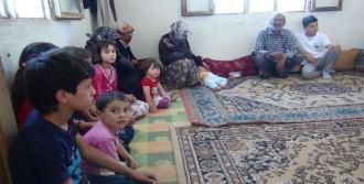 Suriyeliler Bayramı Buruk Kutluyor