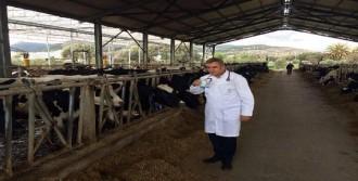 Süt Üreticisine Hayat Verme Çağrısı