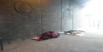 Taksim'de Suriyeli Gençlerin Dramı