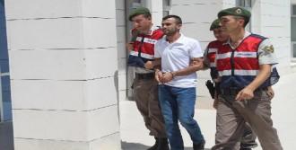 Tatil Beldesinde Terör Örgütü Üyesi Yakalandı