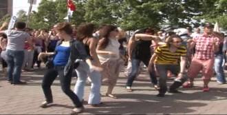 THY'ye 'Harlem Shake' İle Protesto