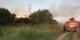 Tire'de Kağıt Fabrikasında Yangın
