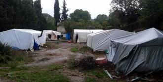 Suriyeliler İçin Yardım Çağrısı