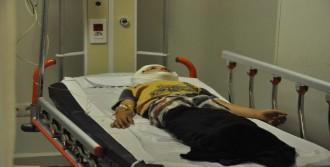 Traktör Devrildi: Dede Öldü, Torunu Yaralandı