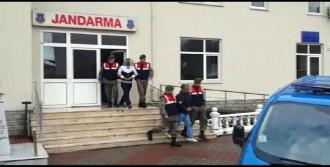 Trakya'da 250 Hırsızlık Yapan Şebeke Yakalandı