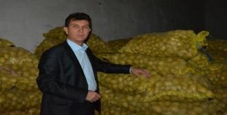 Tüccarlar Patatesi Stoklad