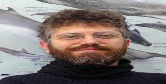 Tüdav: Deniz Memelisi Rehabilitasyon Merkezi Açılmalı