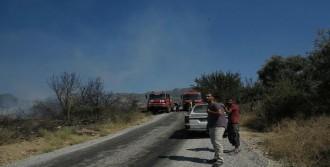 Turgutlu'da Orman Yangını
