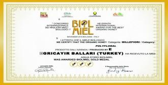 Türk Balına İtalya'dan Altın Madalya