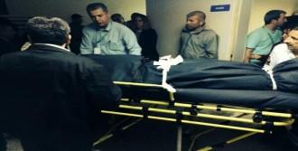 Kurt'un Cenazesi Morga Götürüldü