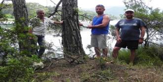 Ünlü Denizci Sadun Boro Yaşamını Yitirdi