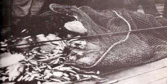 Üsküdar Vapuru Faciası Kurbanları Anıldı