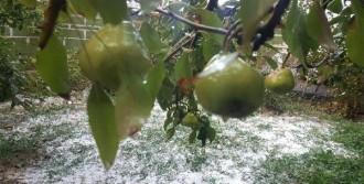 Dolu Yağış Bahçeleri Beyaza Bürüdü