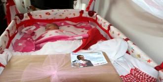 Yalova'da Her Yeni Doğan Bebeğe Bir Ağaç