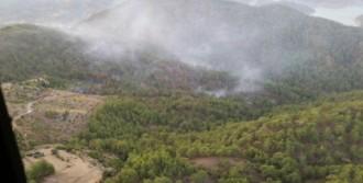 Yıldırım 6 Hektar Ormanı Küle Çevirdi