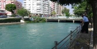 Yolda Yürürken Sulama Kanalına Düştü