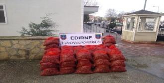 Edirne'de 2.5 Ton Midye Ele Geçirildi