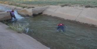 Sulama Kanalına Düşerek Boğulmuş