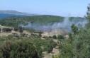 Urla'daki yangında 5 dönüm alan zarar gördü!