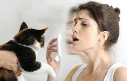 Kedi ve köpekler Alerjiyi Tetikler mi?
