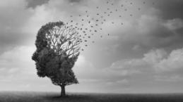 Alzheimer ile ilgili doğru bilinen 10 yanlış!