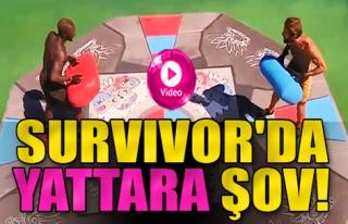 Survivor'da Yattara Şov!