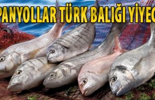 İspanyollar Türk Balığı Yiyecek