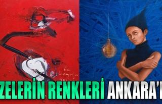Dizelerin Renkleri Ankara'da