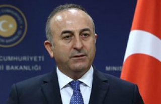 'Rejim Afrin'e Girmedi'