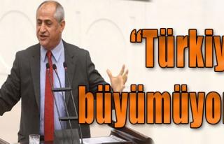 'Türkiye Büyümüyor'