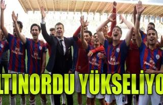 Altınordu 3-1 İstanbulspor