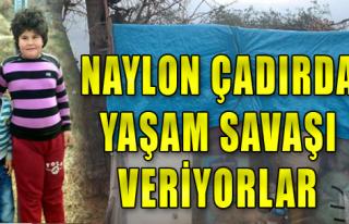 Naylon Çadırda Yaşam Savaşı