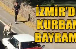 İzmir'de Kurban Bayramı'nda Manzara Değişmedi