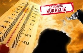 Son 100 yılda sıcaklıklar 5 derece arttı!