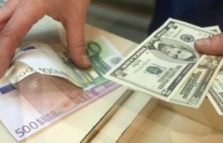 Dolar ve euro kuru bugün ne kadar? (31 Mayıs 2018...
