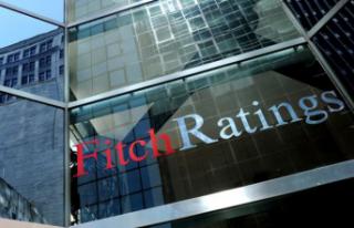 Fitch'ten Türk Lirası açıklaması