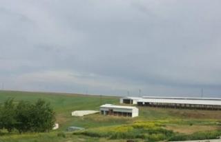 Son dakika haberi: İzmir'de 'ikinci Çiftlik...