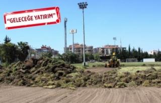 Altay'da sahalar yenileniyor