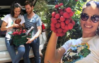 Aşkın meyvelerini topladılar