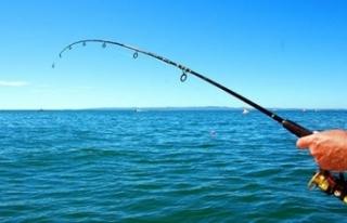 Bu balıkları avlayan bin 300 lira ceza ödeyecek!